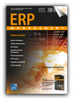 Business Analytics (ERP Management 3/2014)